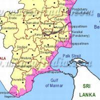 Warum die Tamil Tigers Südindien als Rückzugsgebiet nutzen