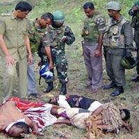 USA fokusieren auf die Tötung der Tiger-Chefs