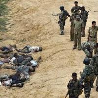 UN hat zuverlässige Beweise für Verbrechen der SL-Regierung